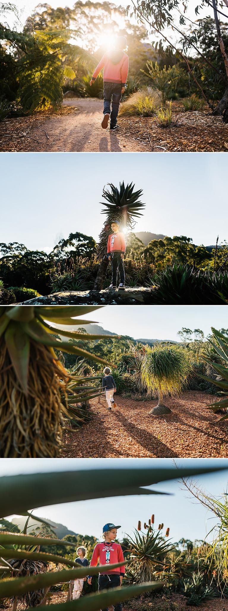 Wollongong-botanical-gardens-lifestyle-photography